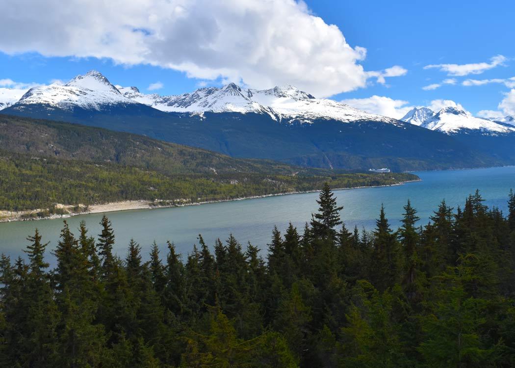Skagway Sled Dog Alaska Shore Excursions