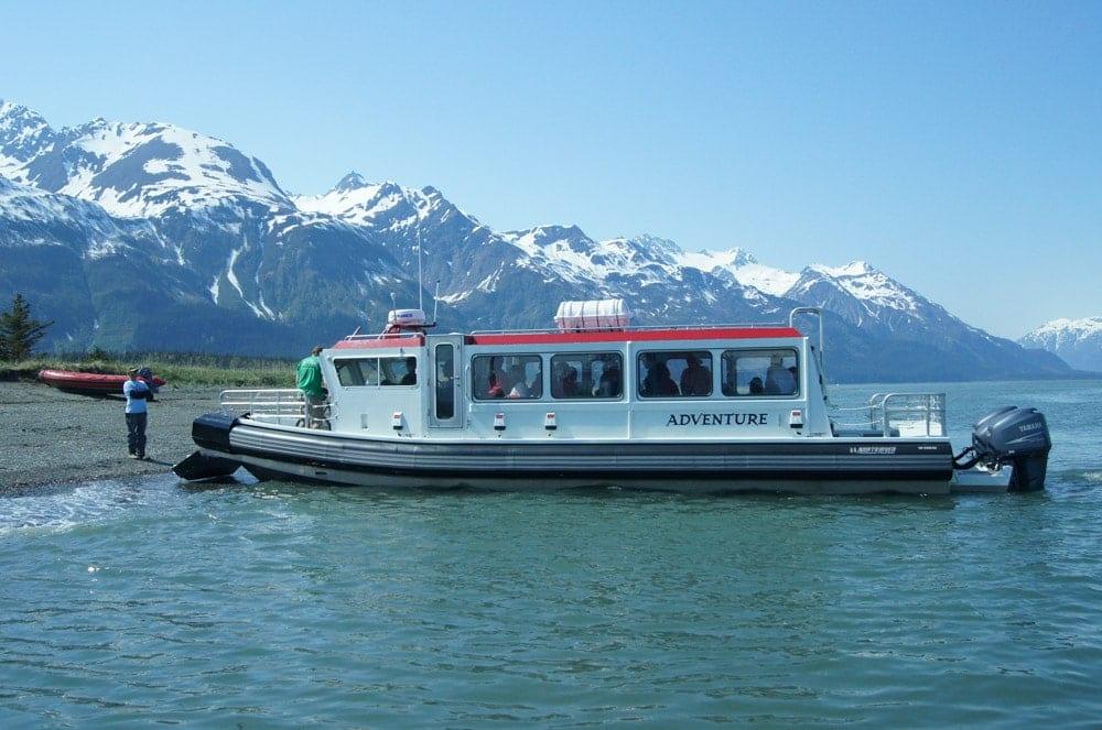 Glacier Point Wilderness Safari