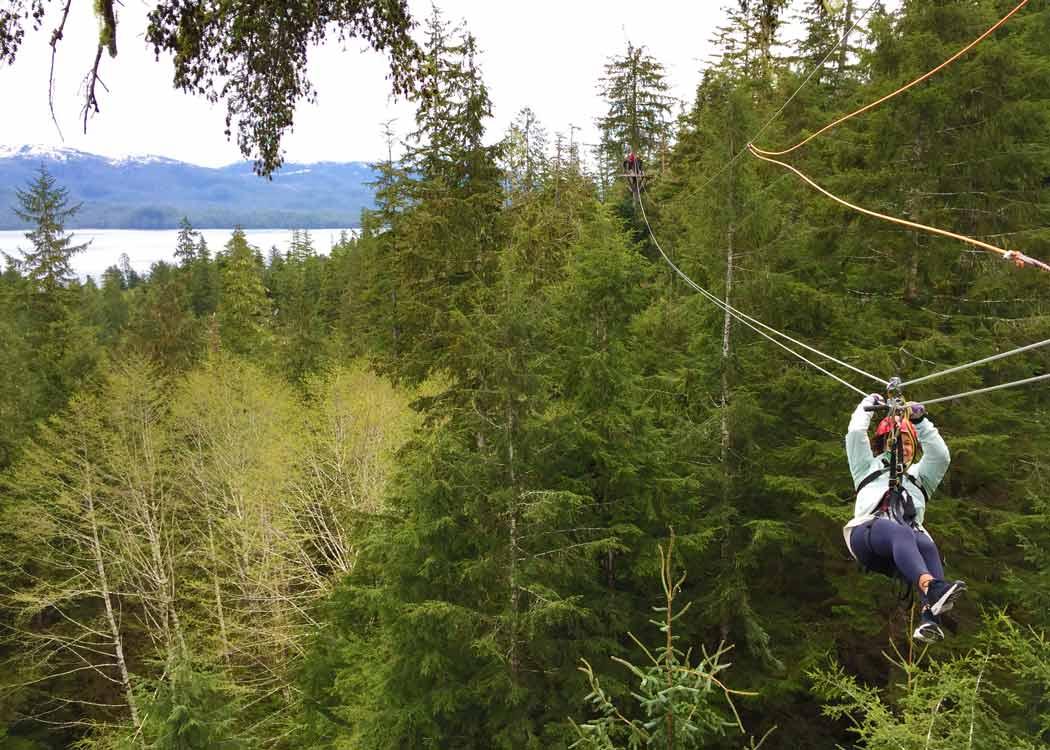 Rainforest Canopy and Zipline Alaska Shore Excursions
