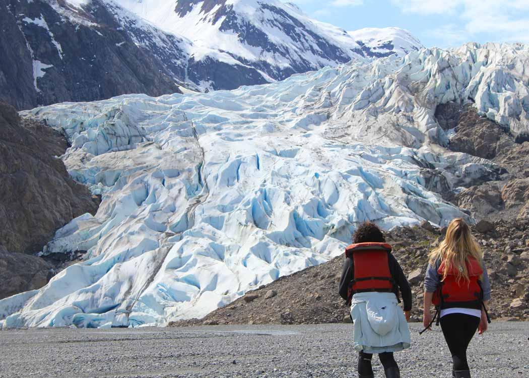 Glacier Point Wilderness Safari Alaska Shore Excursions
