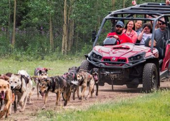 Yukon Discovery & Sled Dog with Alaska Shore Tours
