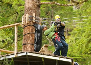 Bear Creek Zipline with Alaska Shore Tours