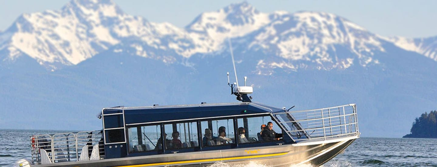 Whale Watching and Mendenhall Glacier Tour with Alaska Shore Tours