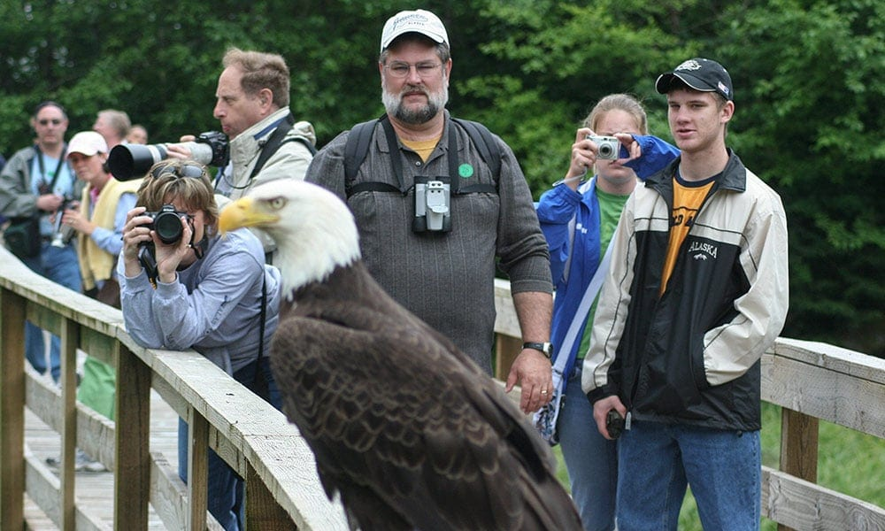 Wildlife Sanctuary and Eagle Center