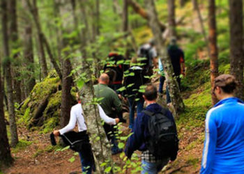 Skagway Triple Adventure with Alaska Shore Tours