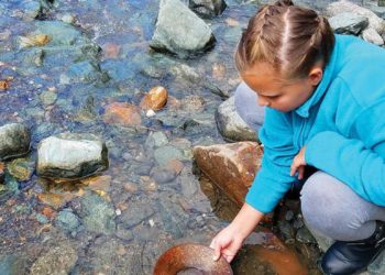 Gold Panning and Salmon Bake with Alaska Shore Tours