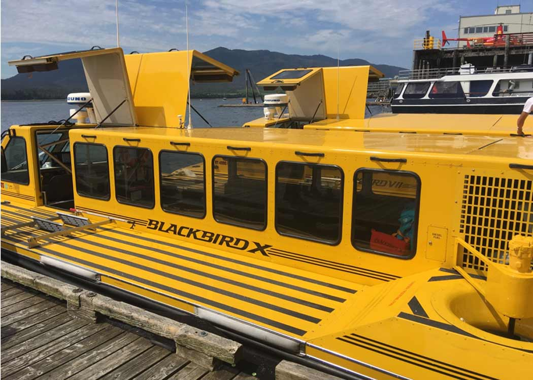 Hovercraft Eco Adventure and Wildlife Viewing Tour with Alaska Shore Tours