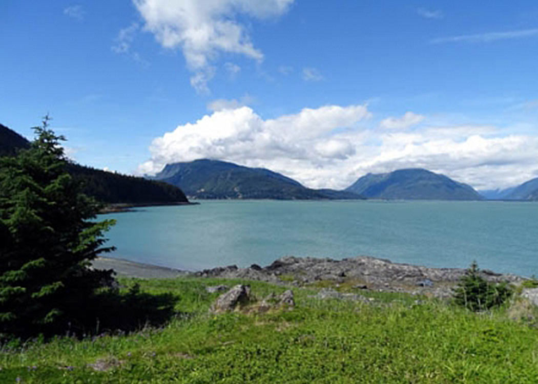 Haines Bike, Hike, & Brew with Alaska Shore Tours