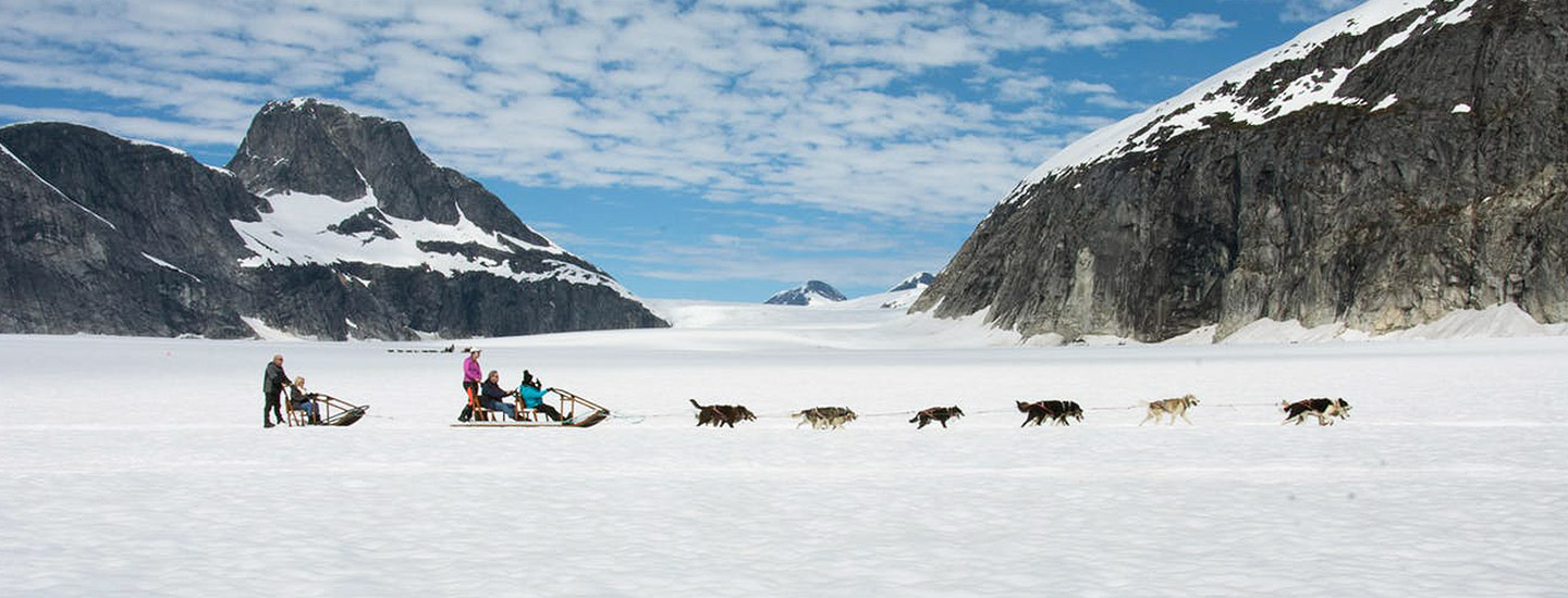 Glacier Dog Sled Adventure with Alaska Shore Tours