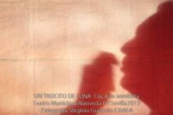 UN-TROCITO-DE-LUNA--A-la-Sombrita--FITSevilla2015--CDAEA-3