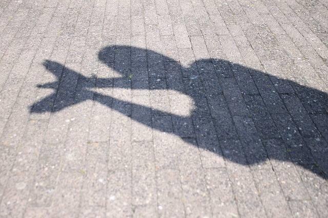 Competencia curriculares teatro de sombras