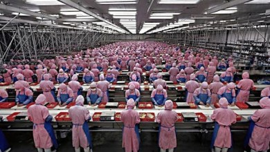 صورة حقوق العامل فــي ظل الهيمنة الرأسماليـة