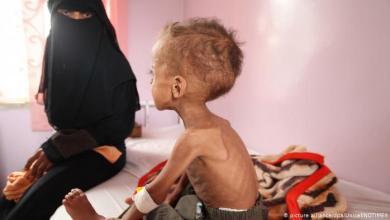 """صورة فاز """"برنامج الغذاء العالمي"""" بجائزة نوبل للعام 2020 بالرغم من فضائحه في اليمن"""