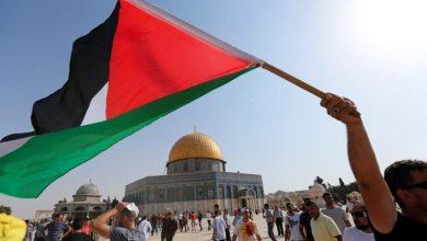 صورة القضية الفلسطينية إلى أين… ؟