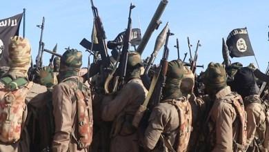 صورة عودة داعش (أهم الرسائل)