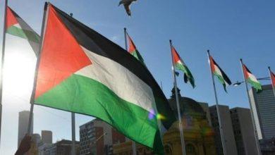 صورة عندما يطبع العربان ويطالب يهود بإعادة فلسطين لأهلها