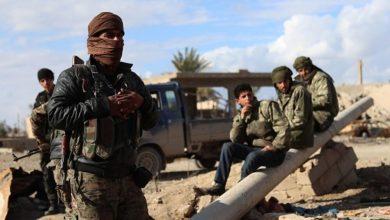 صورة عودة داعش قراءة في الاسباب