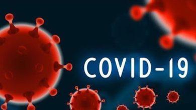 صورة أمرٌ غير مسبوق.. هذا هو تأثير كورونا على الإنفلونزا العادية