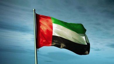 صورة سياسي سعودي : الإمارات سرقت آثار اليمن ومئات الأطنان من ذهب السودان وليبيا