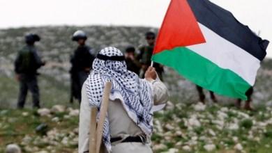 صورة مؤرخ اسرائيلي : 1948 كان عام النهب
