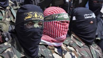 صورة المقاومة بين المنظمة والتنظيم