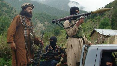 صورة غَفىَ الذئب داخل طالبان واستفاقت حمامة السلام