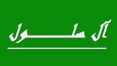 صورة آل سلول وإعلامهم المُنحط..