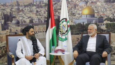 صورة طالبان اليوم وغدا حماس