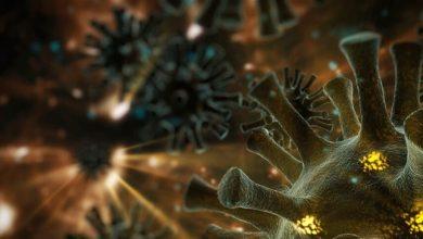 """صورة أخطر من """"كوفيد-19″… لماذا يتوقع العلماء تفشي """"كوفيد-22"""" وماذا نعرف عنه؟"""