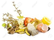 perbedaan sampah organik dan anorganik