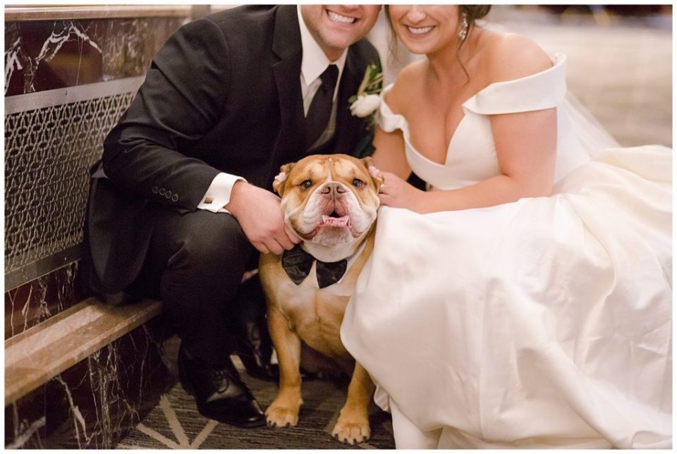 A photograph of the bride and groom kneeling with their pet bulldog, happy to be with him after the wedding is over at a Hotel LeVeque wedding by Alayna Parker Photography  - Columbus OH wedding photographers
