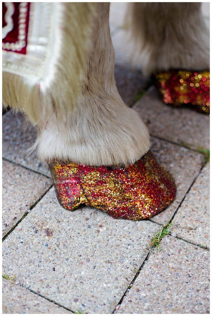 glitter on horse hoofs for baraat