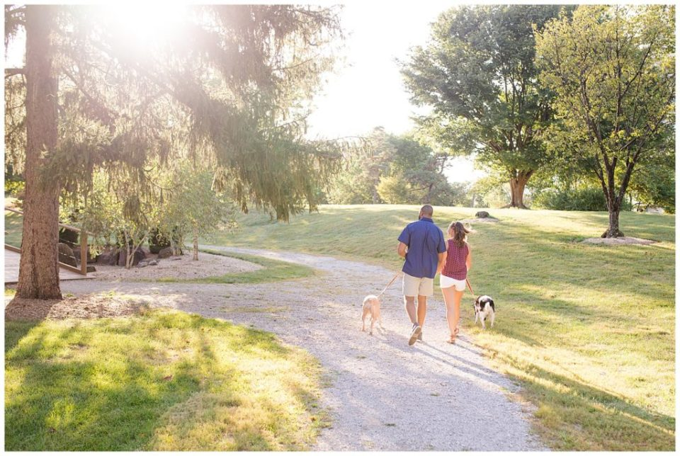 A photograph of a long-range view from behind of an engaged couple walking in a park with their two pet dogs at the Columbus Franklin Park Conservatory by Alayna Parker Photography Columbus OH engagement photographer