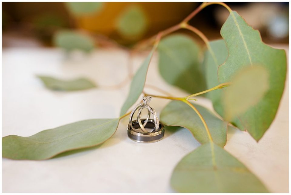 wedding rings standing up beside eucalyptus in a Columbus wedding photography session at Station 67