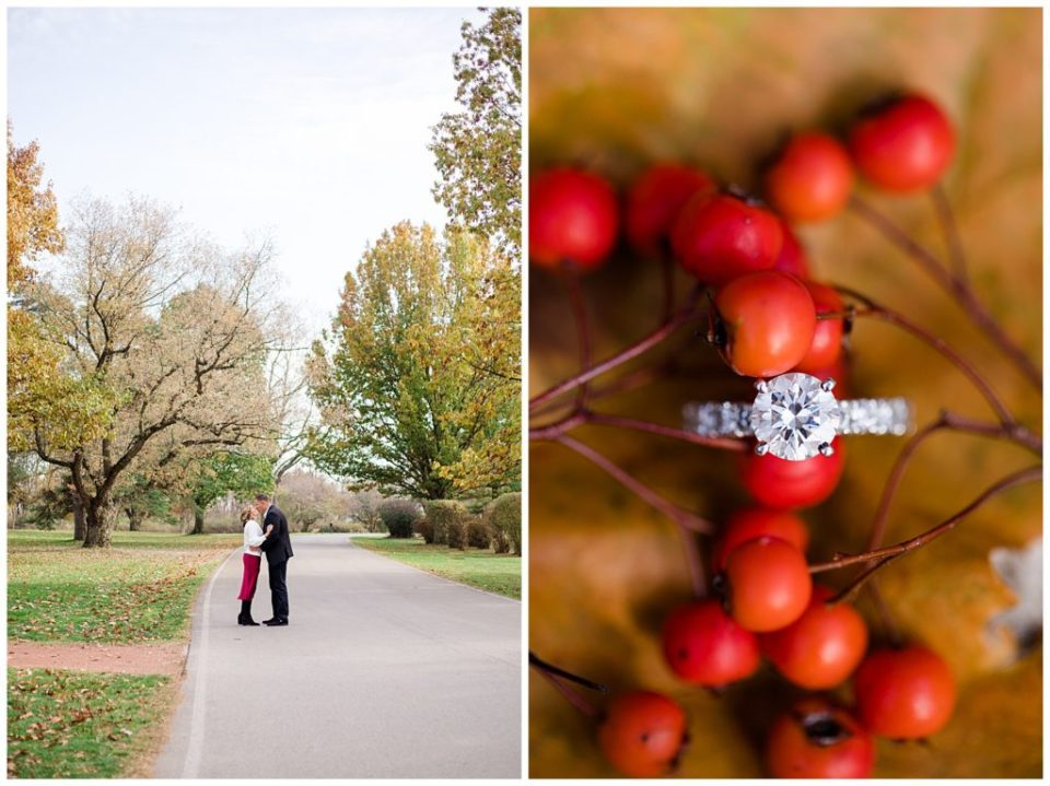 A picture of a long-range view of an engaged couple standing and kissing, surrounded by trees, and a closeup of the engagement ring resting on beautiful fall berries at Brookside Golf & Country Club by Columbus  engagement photographer, Alayna Parker Photography