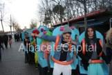 carnaval (20)