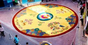 La Junta destina 65.000 euros al VII Congreso Internacional de Arte Efímero que se celebrará en Elche de la Sierra