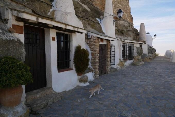 Villarrobledo, Albacete, Chinchilla, Hellín, Yeste y Caudete se mostrarán en FITUR