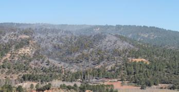 La Junta da por extinguido el incendio de Paterna del Madera