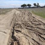 Aprobada por unanimidad una moción del PP para arreglar los caminos públicos rurales de Albacete más afectados por 'Filomena'