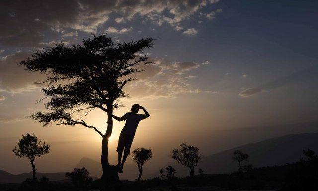 صورة: حامد أحمد التاجر
