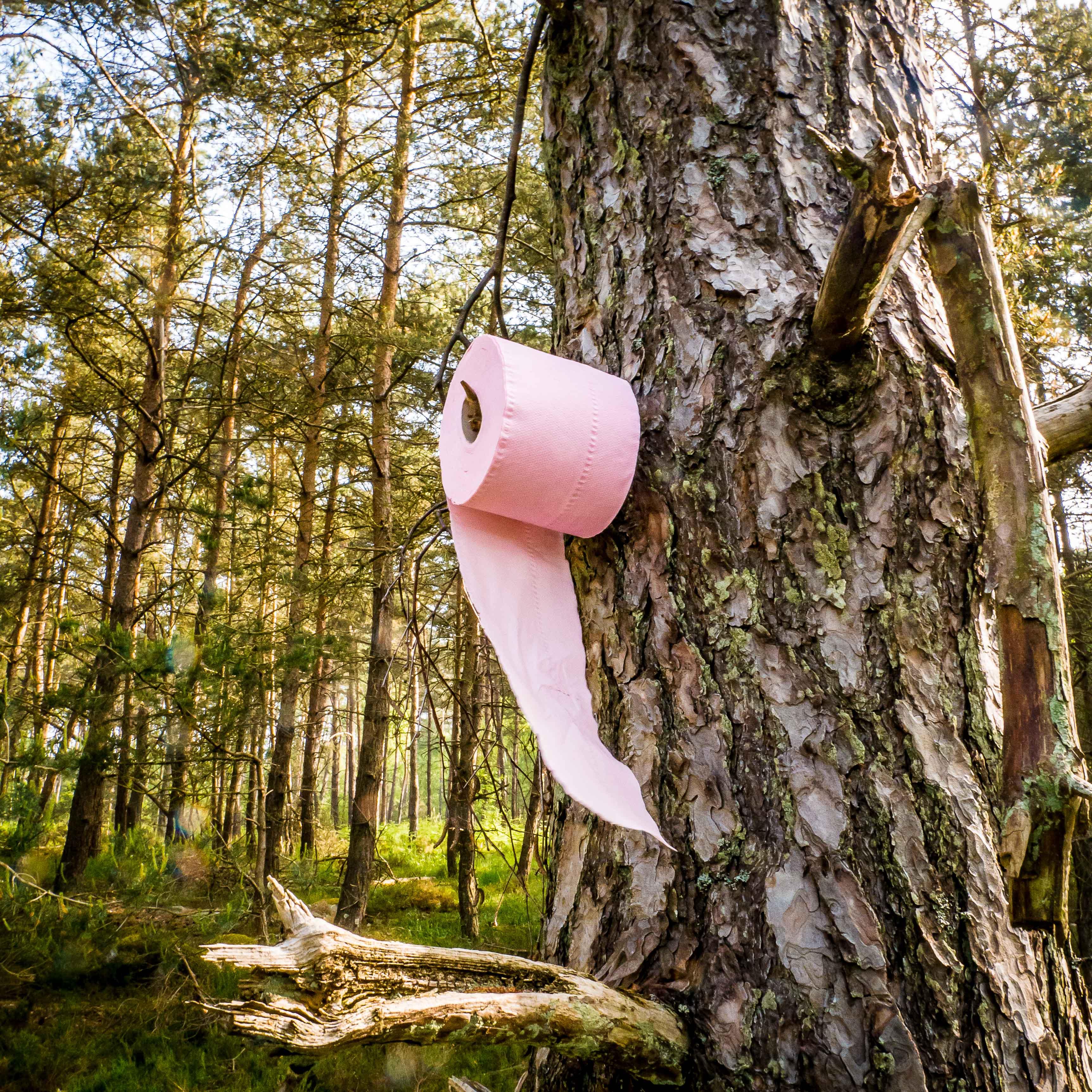 Comment (vraiment) chier dans les bois et y faire ses besoins ?