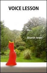 Voice Lesson by Sharon Israel