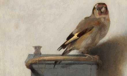 The Next Chapter: The Goldfinch That Ate My TBR List
