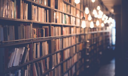 The Next Chapter: Conversations With Obscure Books