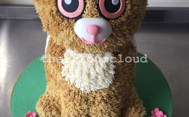 Beanie Boo Birthday Cake Ty Beanie Boos Birthday List Hot Trending Now