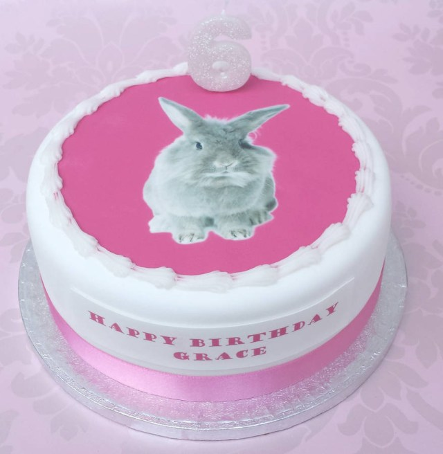 Bunny Birthday Cake Bunny Kitten Or Puppy Birthday Cake Decoration Kit Clever Little