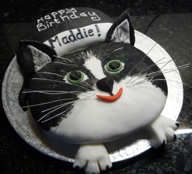 Cat Cakes For Birthdays Cat Birthday Cake To Match Pets Photo Wedding Birthday Cakes