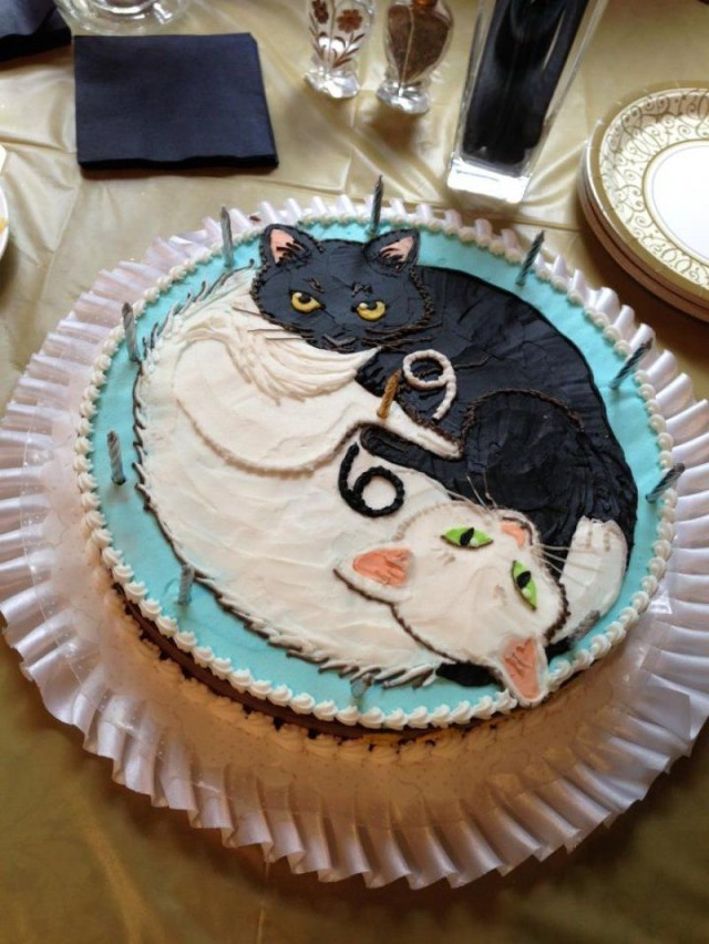 Cat Cakes For Birthdays Heres A 69 Cat Birthday Cake For Some Reason Cat Cakes