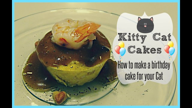 Cat Cakes For Birthdays Kitty Cat Cakes How To Make A Birthday Cake For Your Cat Youtube